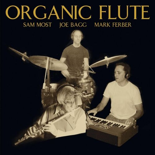 Sam Most Joe Bagg Mark Ferber - 2010 - Organic Flute (LiquidJazz)