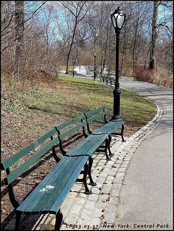 9-NY-Central Park-13