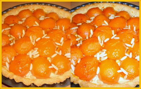 Tarte_Abricots_frais