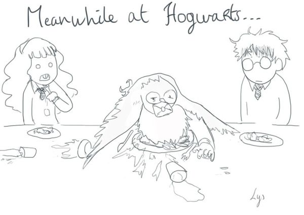 meanwhile at hogwarts