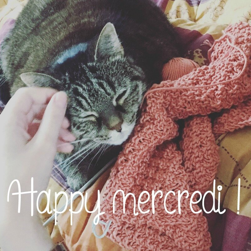 Happy Mercredi2