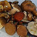 Avesnois - un repas de saison