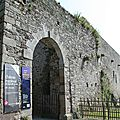 château-de-Regnéville-sur-Mer