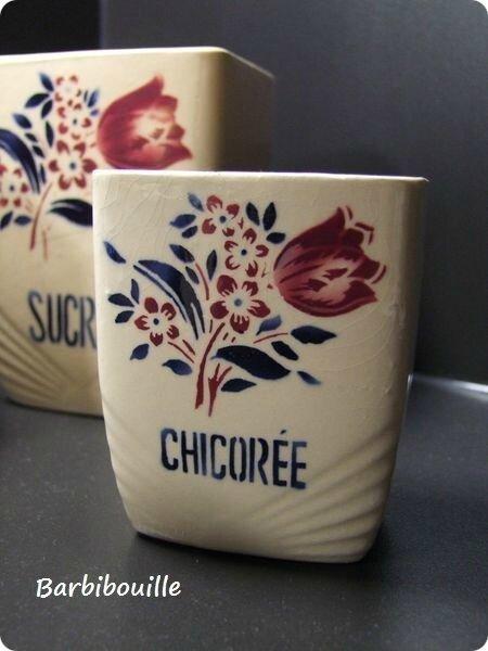chicoree-tulipe
