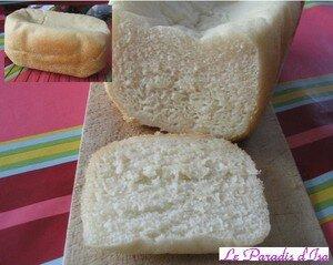 pain_sans_gluten