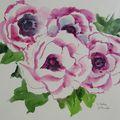 Aquarelle - Fleurs