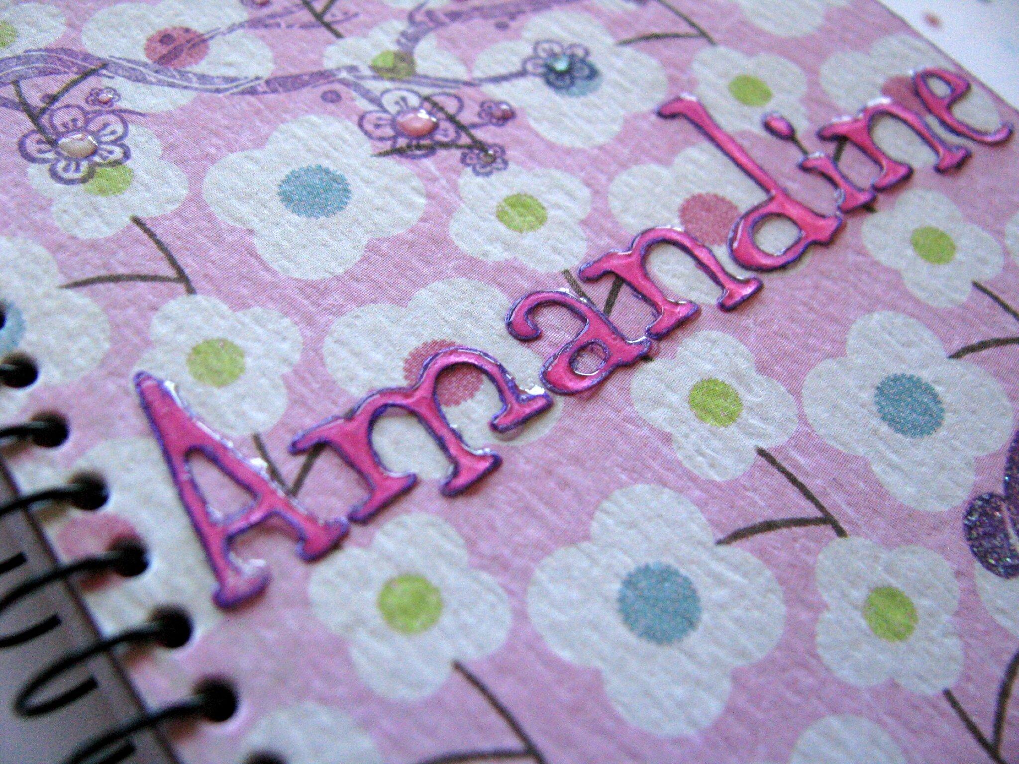 2013 02 carnet Amandine 04