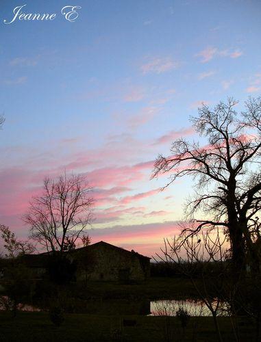Une soirée rose mars