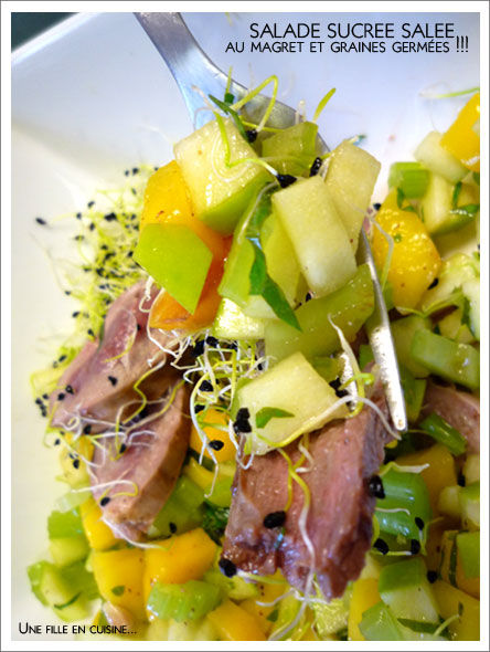 salade_mangue_magret_pou2