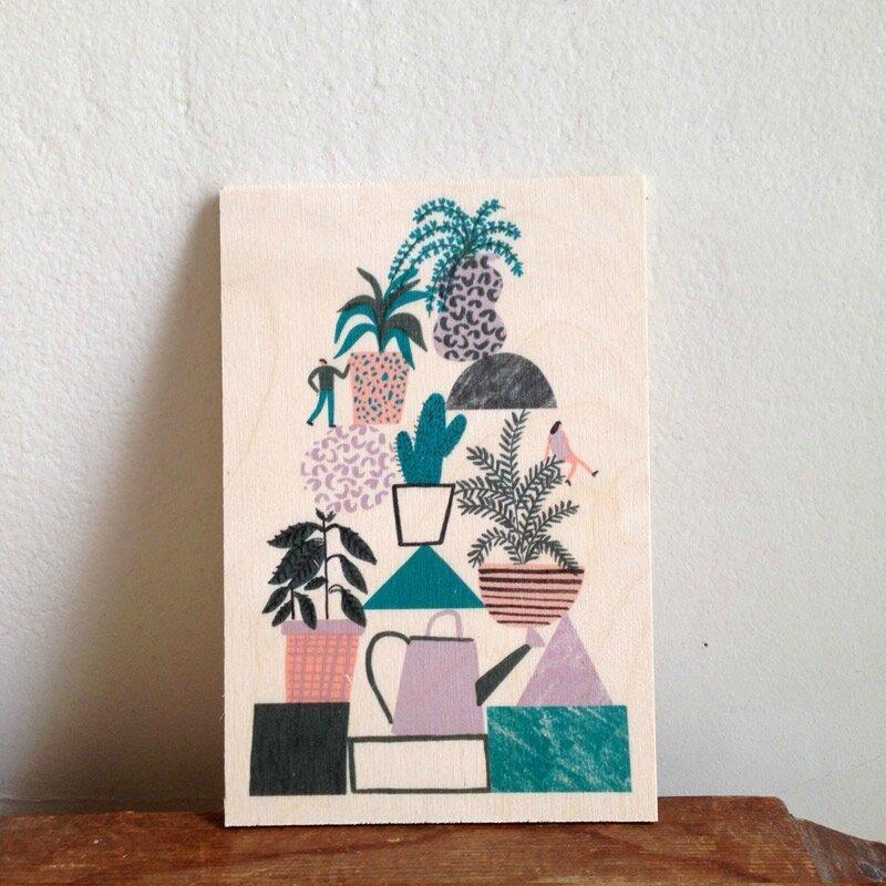 timbergram-cactus
