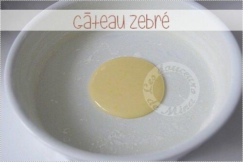 Gâteau_Zebré011