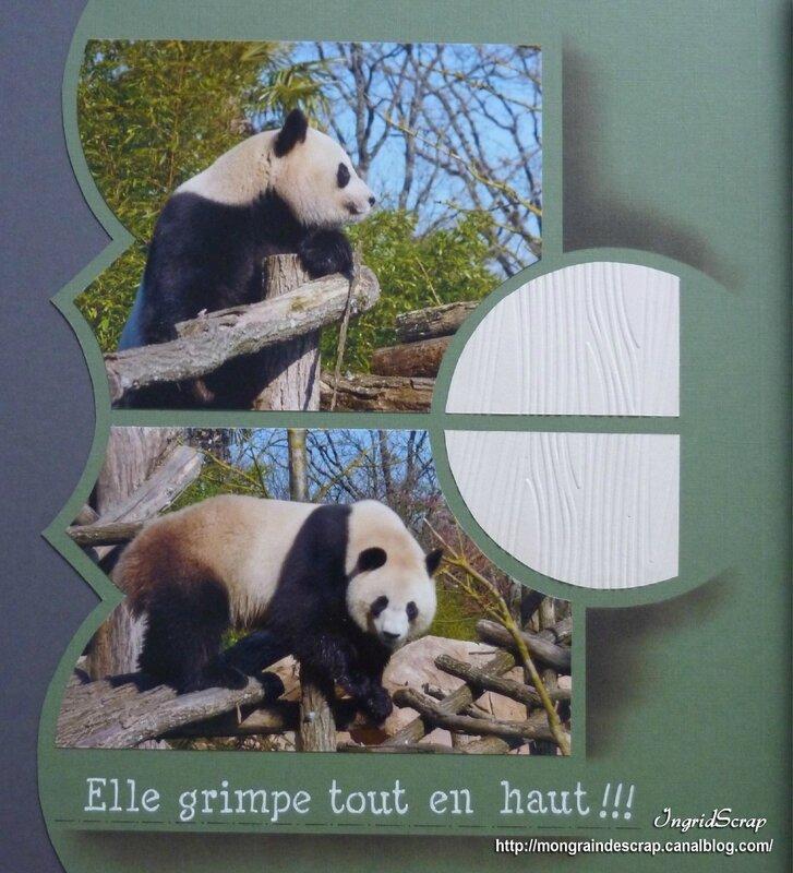 Mme Panda 2
