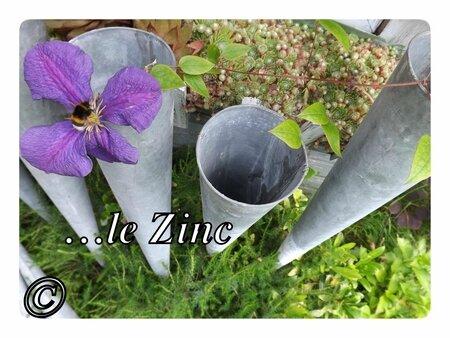 01-zinc13
