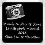 defi photo noir et blanc