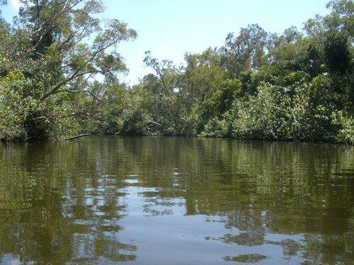 Paysage, en canoe