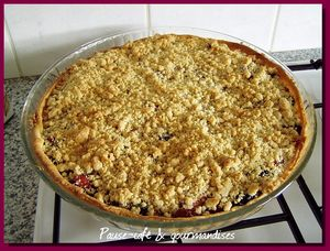 tarte_crumble_pommes_griottes__6_