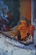 Photo sur bois 50x75 La feuille & l'eau 001