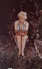2017-03-27-Marilyn_through_the_lens-lot09