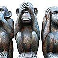 Histoire de singes ...