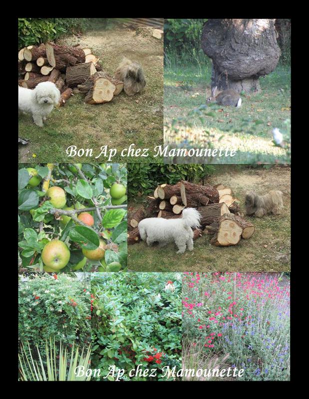 Chez Mamounette