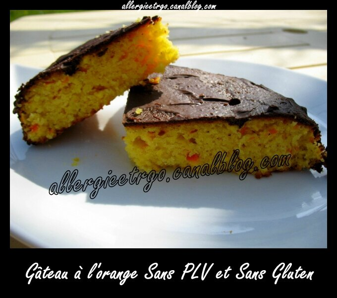 Gateau à l'orange sans plv et gluten