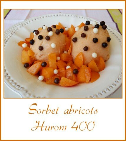 sorbet abricots Hurom 400
