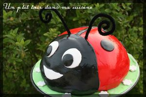Coccinelle 2