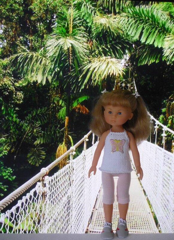 pont suspendu forêt tropicale (2)