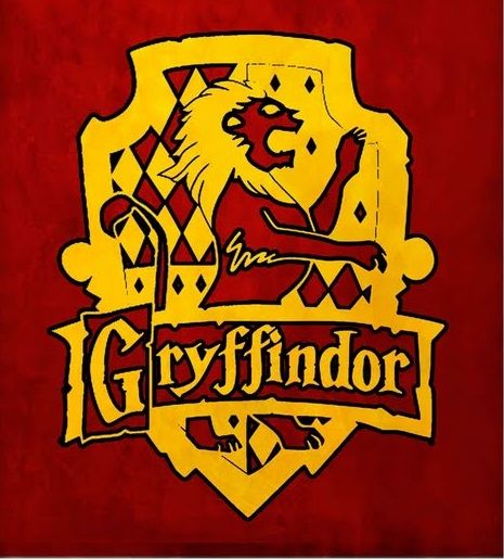 Halloween party decoration - Harry Potter Gryffondor Album Photos Soir 233 Es 224 Th 232 Me