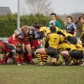 66IMG_0710T