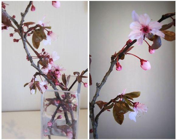 Bouquet Cerisier Sakura 2