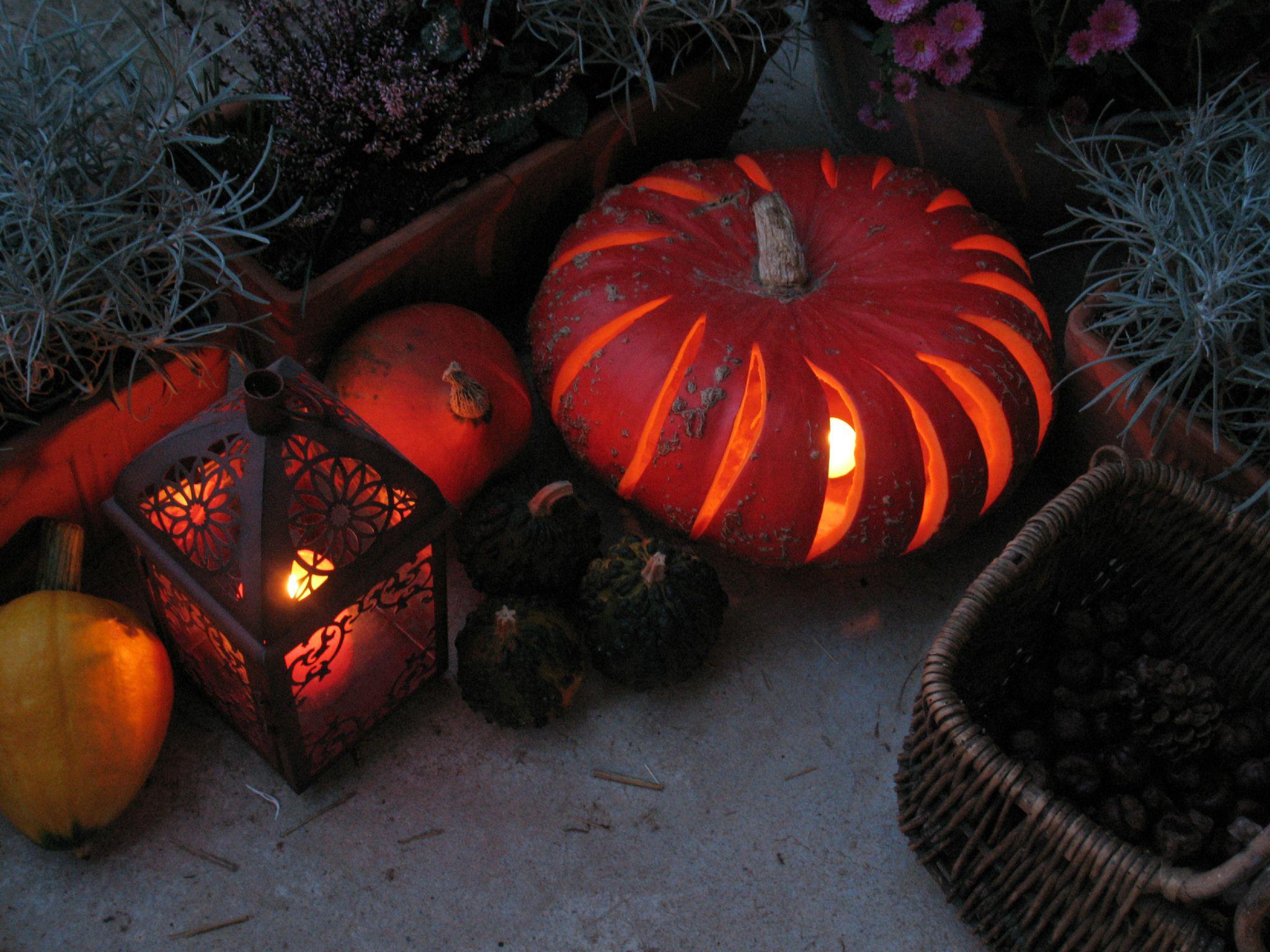 Sp cial halloween brin et brindille atelier saisonnier for Exterieur rind