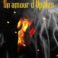Un amour d'Opales - Rusbee Legueleck - Edilivre - 2008