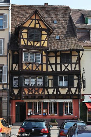 Winstub--Colmar