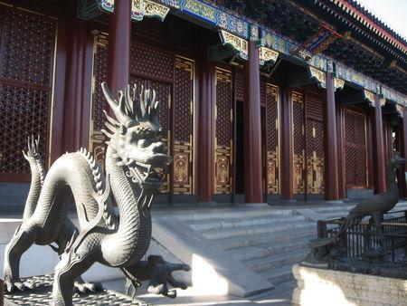 Beijing_Lunar_New_Year_2009_204