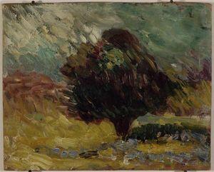 L'olivier Matisse 1898