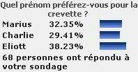 sondage_prenom_2