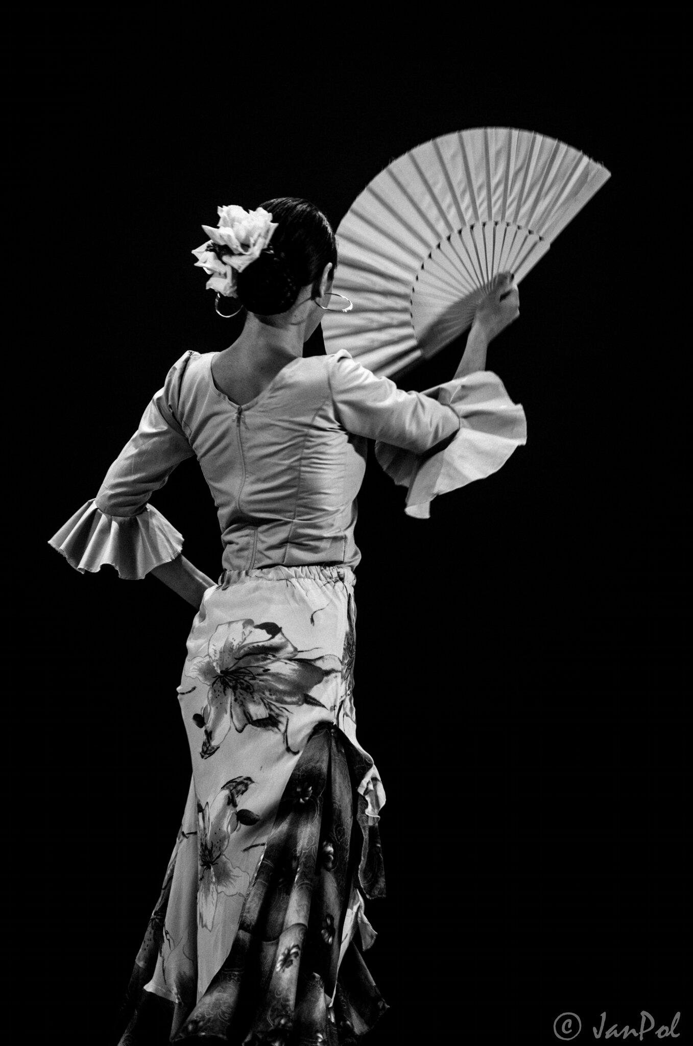 flamenco en dos majeur club photo arr t sur images. Black Bedroom Furniture Sets. Home Design Ideas