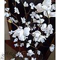 Cerisier détails