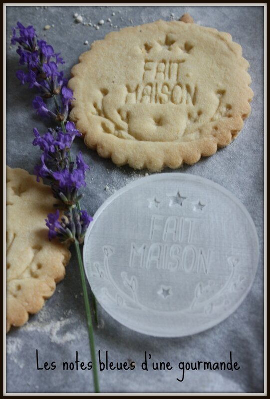 biscuits__maison_Les_notes_bleues_d_une_gourmande