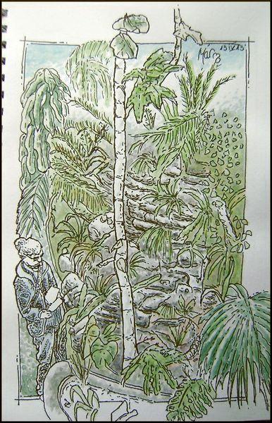 Jardin Plantes-001-b