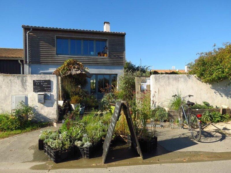 un jardin naturaliste inspir par piet oudolf un nouveau jardin. Black Bedroom Furniture Sets. Home Design Ideas
