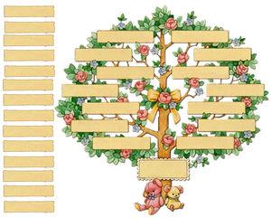 arbre__genealogique_1