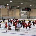 Citation du hockey - coupures au camp de sélection