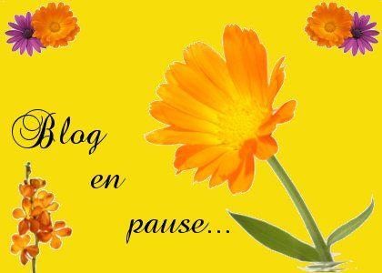 blog_en_pause