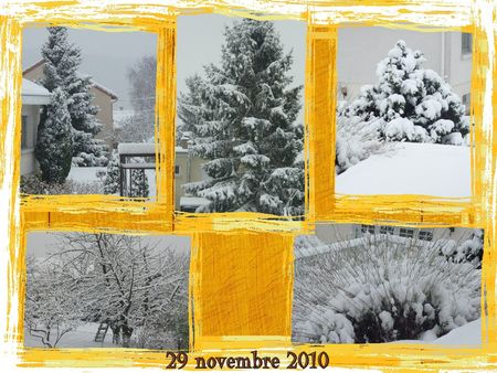 neige_29_novembre_2010_2