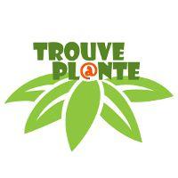 LogoTrouvePlante_0