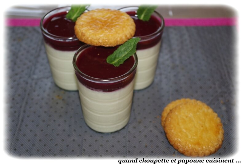 panna cotta purée de fruits rouges-9293