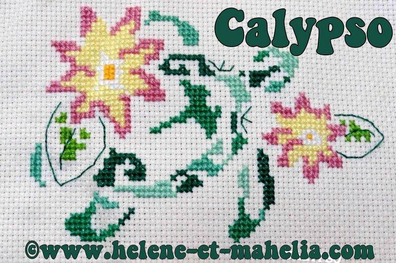calypso_saljuil14_6