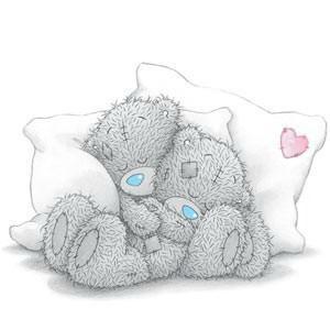 teddy5
